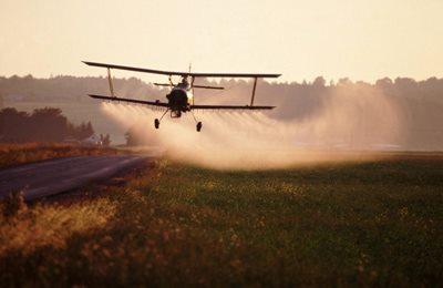 Пестициды повышают смертность
