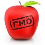 изменились правила для выращивания ГМО на Украине