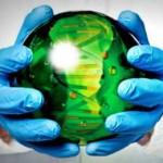 страны регулирующие синтетические организмы