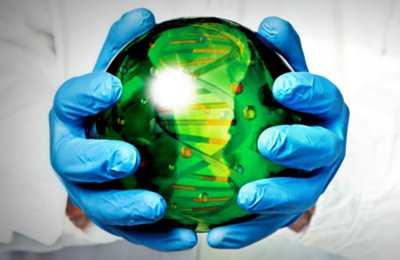 решение о синтетических организмах
