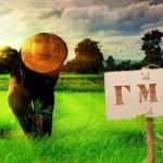 фермер выращивает свою пищу