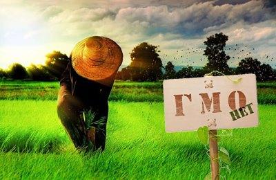 будущее фермерства