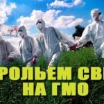 известное российское исследование ГМО