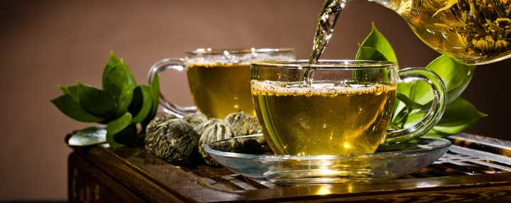 чашка зеленого чая и выведение ГМО