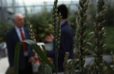 распространение ГМО в Южной Корее