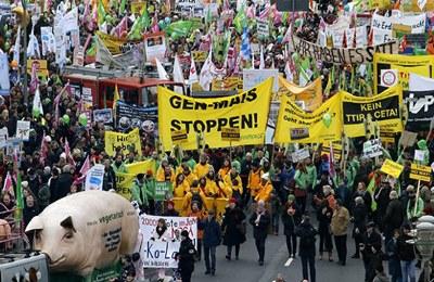 протестующие немцы против ГМО