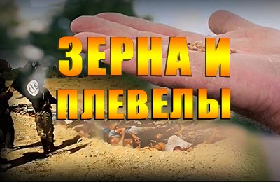 российский документальный фильм о ГМО