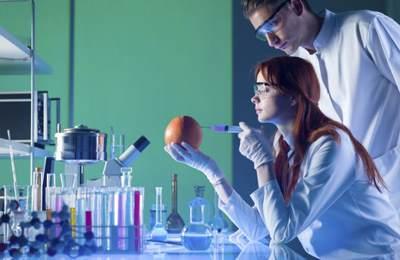 исследования на безопасность ГМО