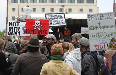 бельгийцы и немцы против ГМО