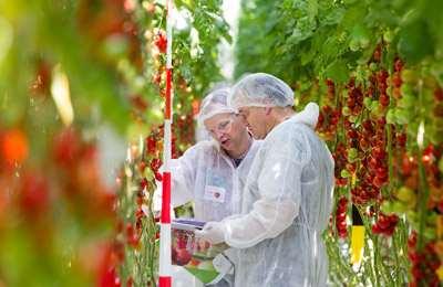 патентирование растений в Европе