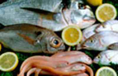 изучение жирных рыб