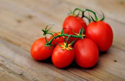 органические томаты