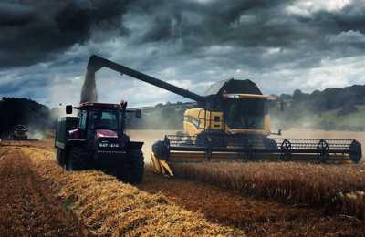Северная Ирландия против ГМО