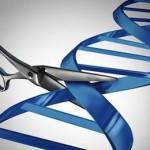 передовые методы создания ГМО