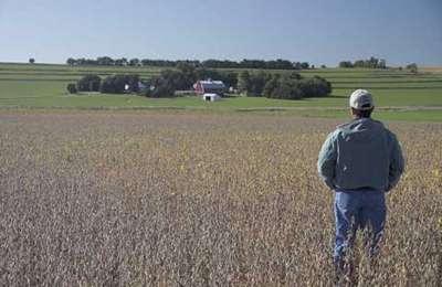 соевое поле и фермер
