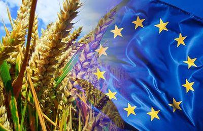 европейский подход к ГМО