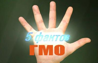 пять фактов о ГМО