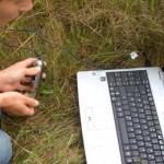 Исследование: Бабочек необходимо защищать от Bt-пыльцы