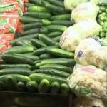 нет стандартов оценки ГМО