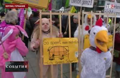 берлинские протесты против ГМО