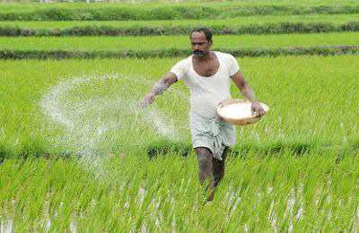 посев ГМО в Иране