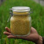 исследователи о золотом рисе
