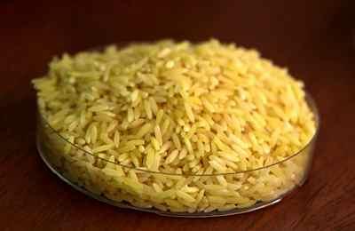 провал ГМО риса