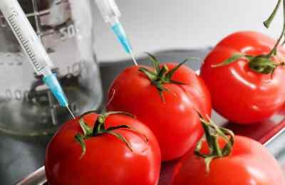 путаница с ГМО