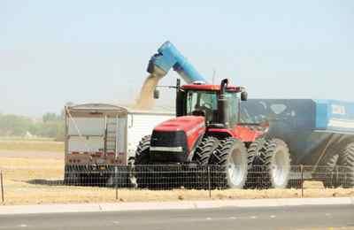 фермеры судятся с Монсанто