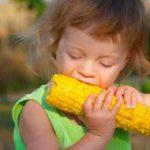 не достигнут консенсус по ГМО