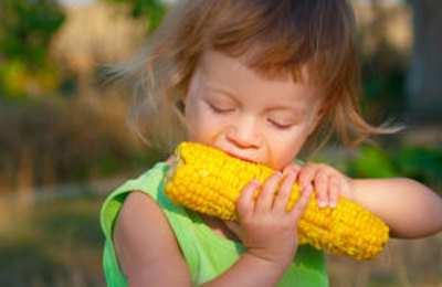 нет консенсуса по ГМО