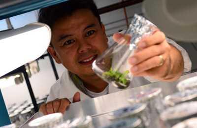 новые методы генной инженерии