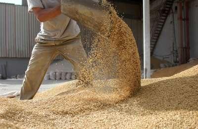 Европарламент не утвердил ГМО