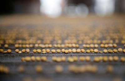 Китай запретит ГМО