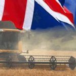 ЕС против ГМО из Англии