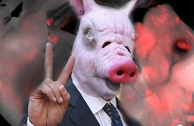 Геном человека ближе к свинье