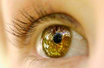 стволовые клетки и зрение