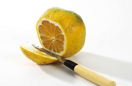 гибрид грейпфрута