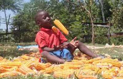 мальчик играется с кукурузой