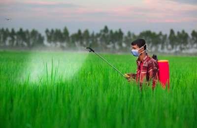 распыление пестицидов над полем