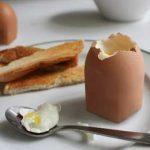 трансгенные яйца