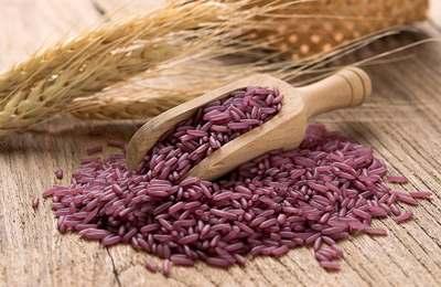 фиолетовый рис