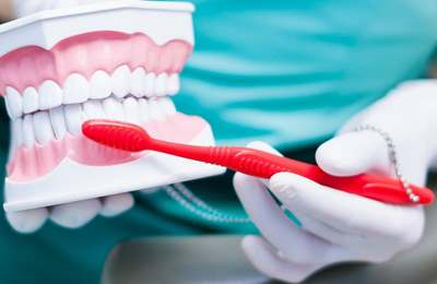 макет зубов