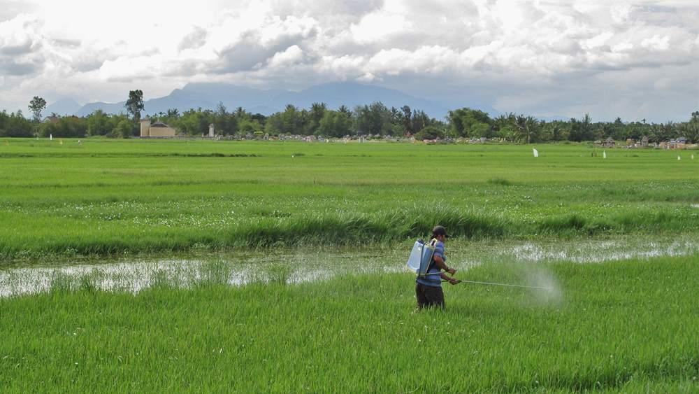 фермер опрыскивает поле пестицидами