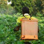 рюкзак с пестицидами