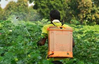 с пестицидами за спиной