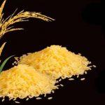 две горки золотого риса
