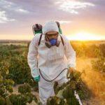 фильм о ГМО на канале РТД