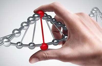 редактирование ДНК