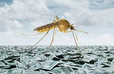 комар на деньгах